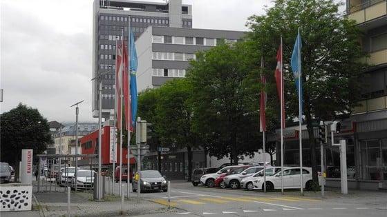Rettet die Robinien an der Solothurnstrasse