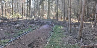 Sanierung der Finnenbahn Riedholz / Feldbrunnen