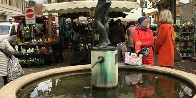 Für einen kontinuierlichen Aarauer Wochenmarkt