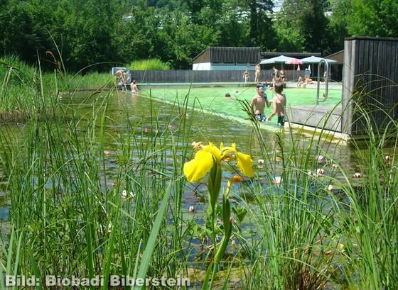 Bio-Badi in Niederrohrdorf