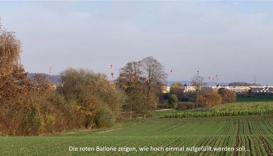 Würenlos: Beliebtes Naherholungsgebiet Steindler erhalten – Deponie verhindern!